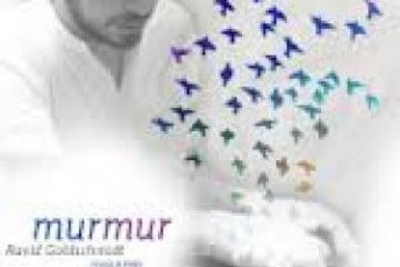 Ravid_murmur